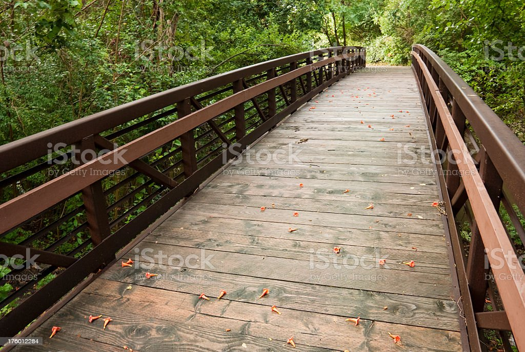 Wooden footbridge over area of greenery royalty-free stock photo