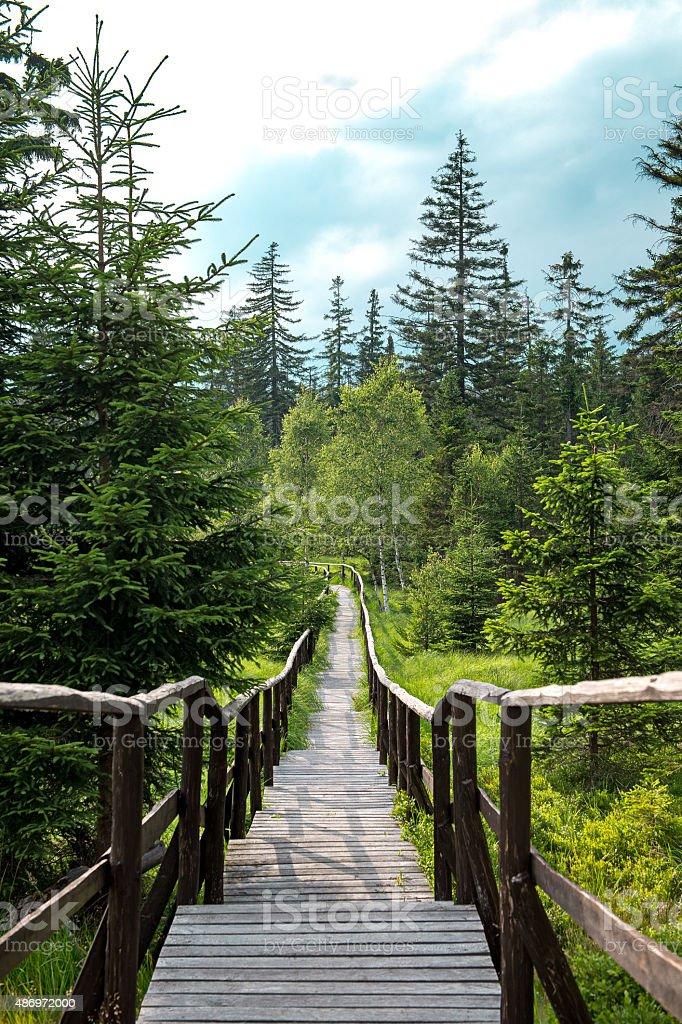 Wooden footbridge with handrails stock photo