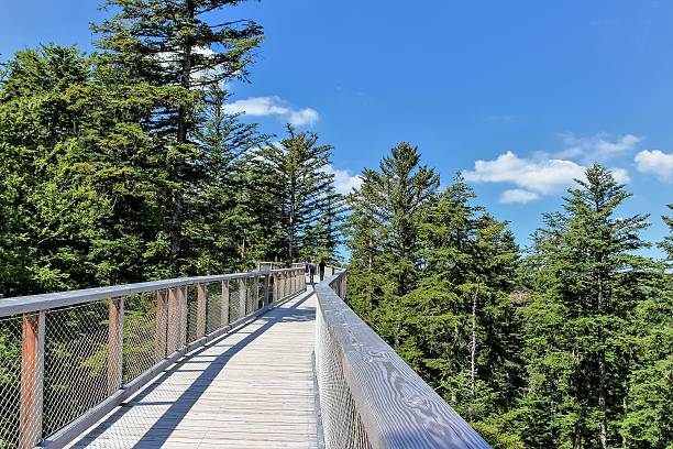Wooden footbridge with lookout to sky stock photo