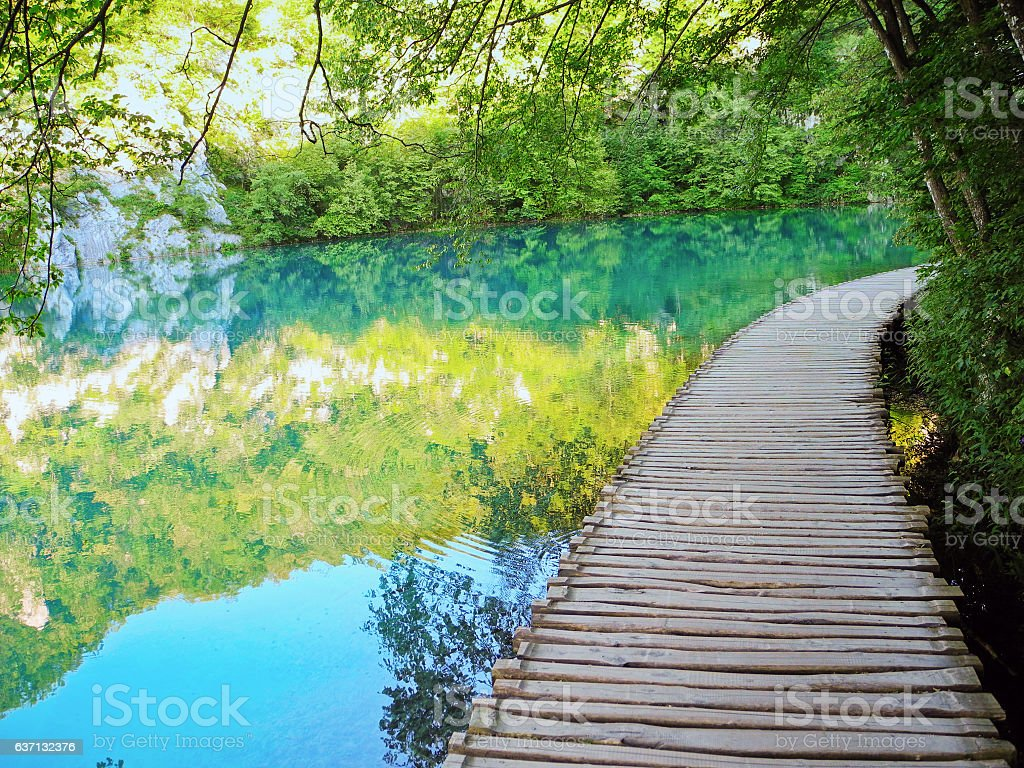 Wooden footpath above the lake. stock photo
