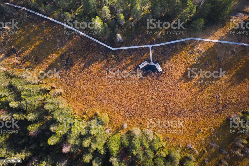 Wooden Footpath From Above stock photo