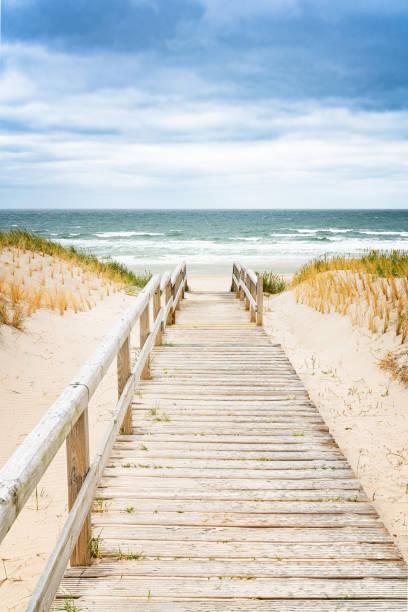trästig på dyn på sylt. entré till stranden. norra tyskland. - sand dune sweden bildbanksfoton och bilder