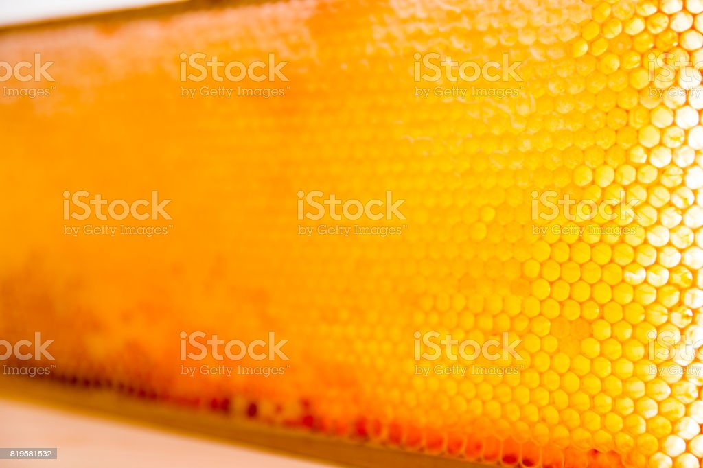 wooden frame with honeycomb full of honey stock photo