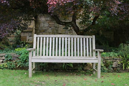 Phenomenal Wooden Garden Bench Stock Photo Download Image Now Istock Dailytribune Chair Design For Home Dailytribuneorg