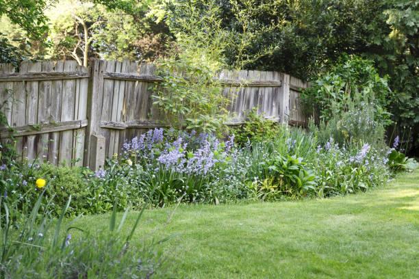 Wooden garden boundary fence stock photo