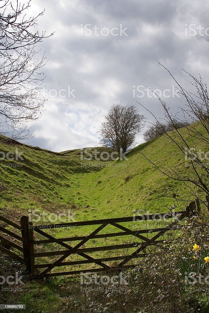 Wooden Gate and Field royalty-free stock photo