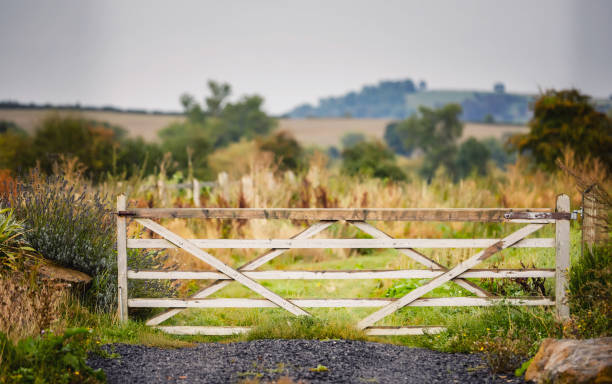 Wooden Gate in a Field stock photo