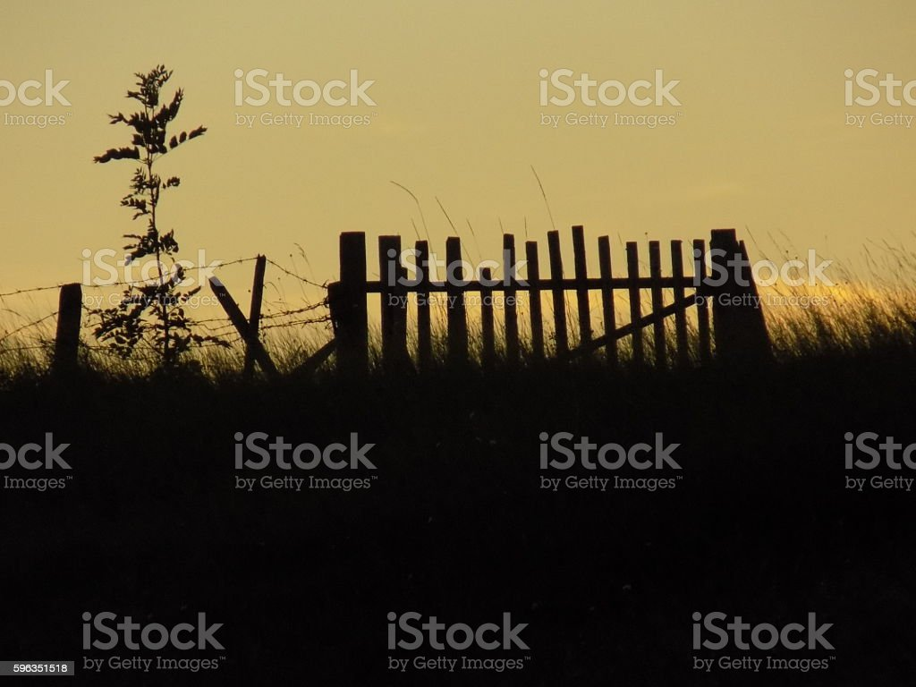 Wooden gate on sunset royalty-free stock photo