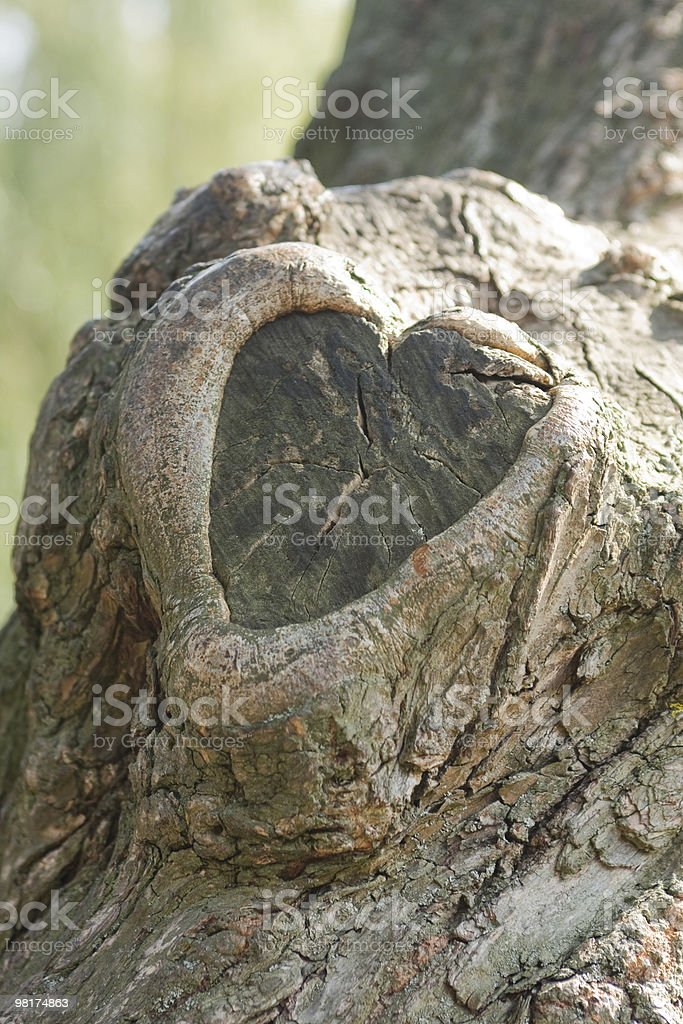 Wooden Heart royalty-free stock photo