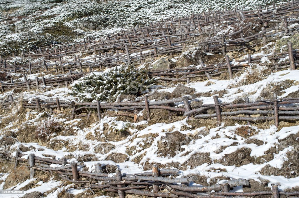 Wooden hedge to strengthen the slope on hill, Bulgaria stock photo