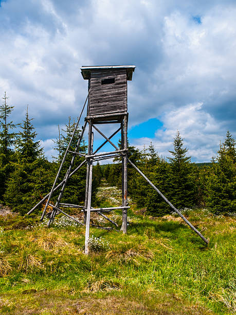 Wooden high seat for hunters Wooden high seat tower for hunters in the forest high seat stock pictures, royalty-free photos & images