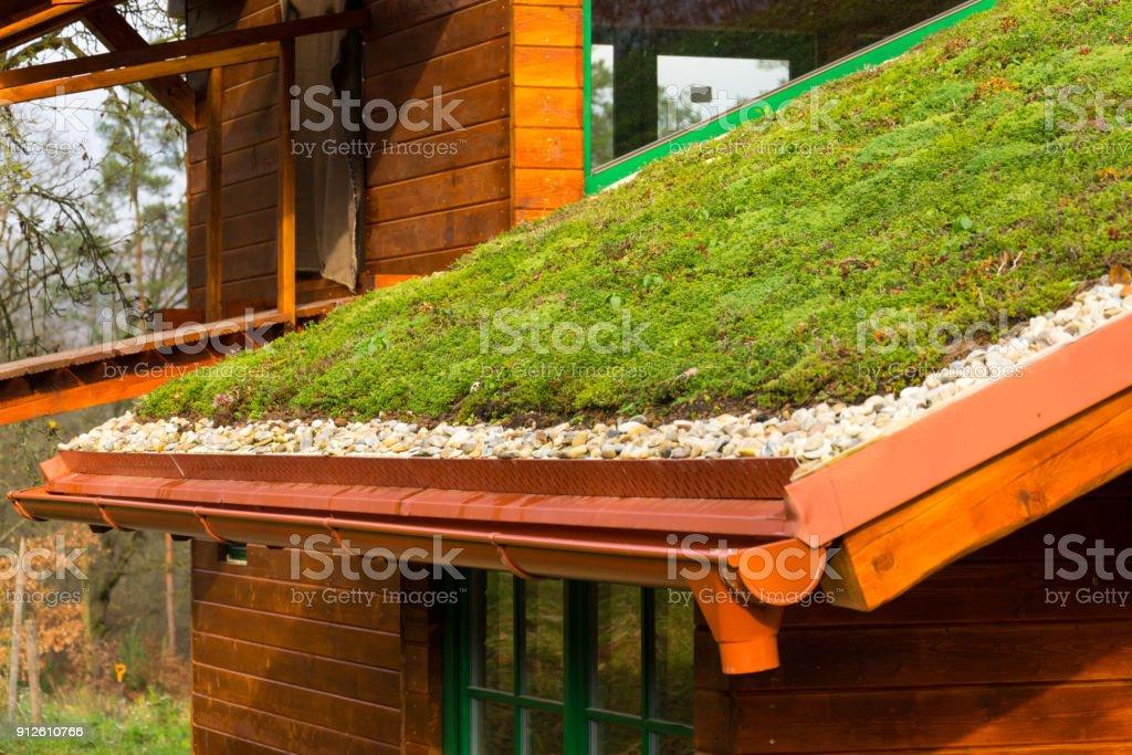 Holzhaus mit umfangreichen grüne Wohnzimmer Dach mit Vegetation bedeckt – Foto