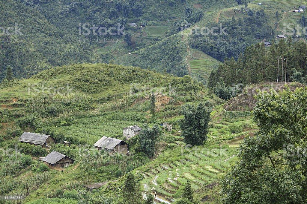 Casas En La Terraza De Madera En Sapa Campo De Arroz Foto De