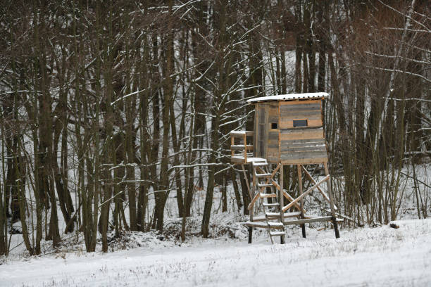 Wooden hunting lodge for hunting in the meadow in winter stock photo
