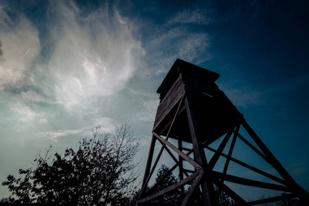 Wooden hunting tower in forest Hunting tower hunting blind stock pictures, royalty-free photos & images