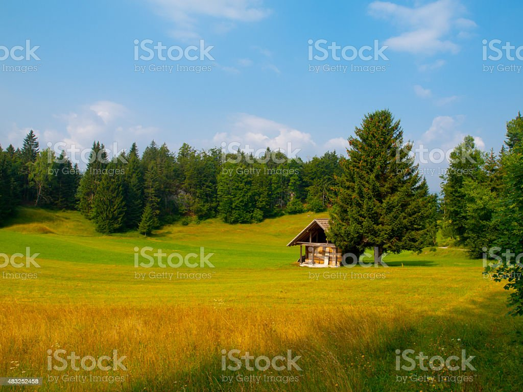 Wooden hut and tree in the middle of meadow stock photo