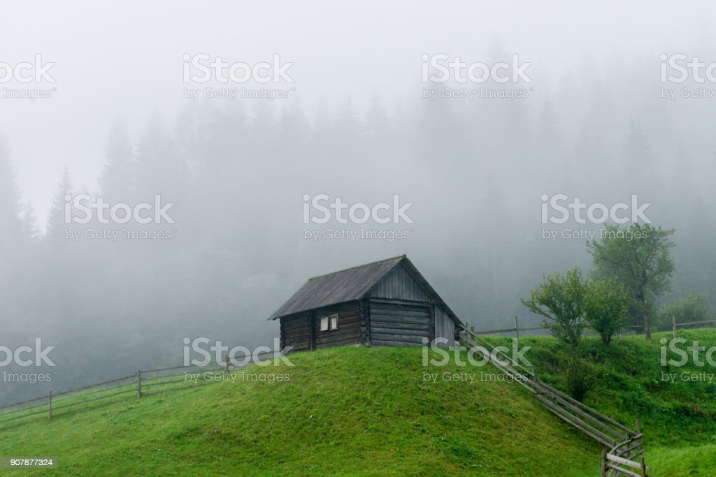 Wooden hut on a green meadow against the background of the forest in the fog stock photo