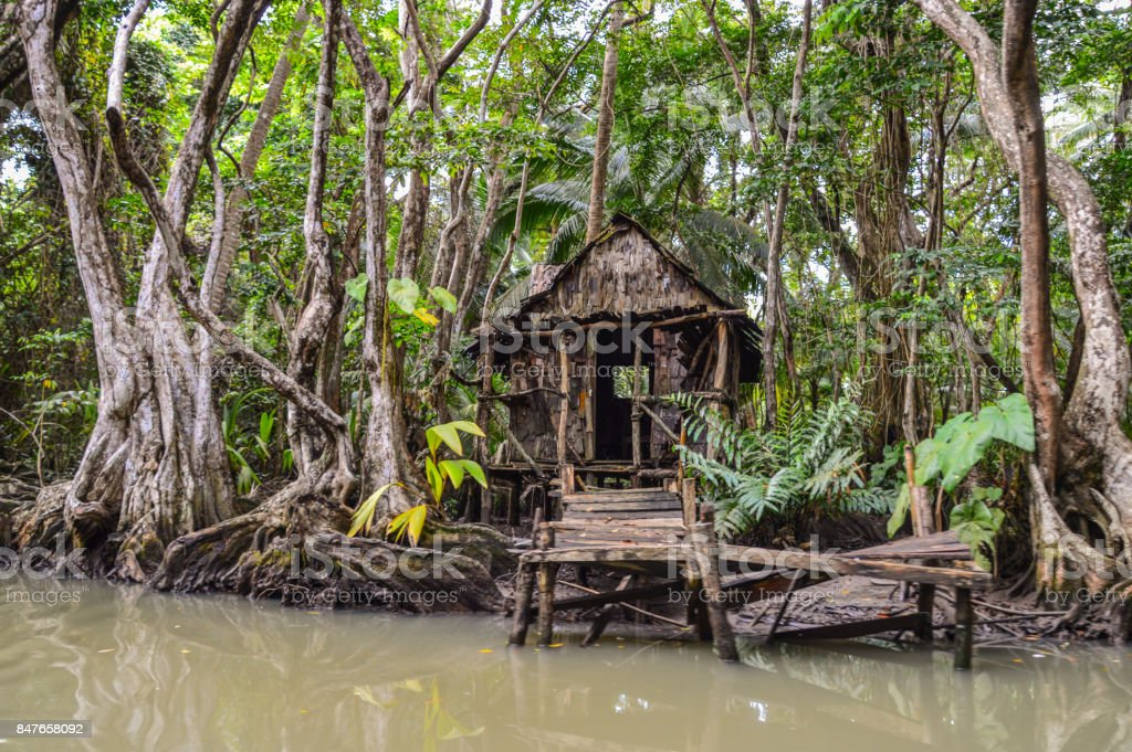 Wooden hut on Indian River, Dominica stock photo