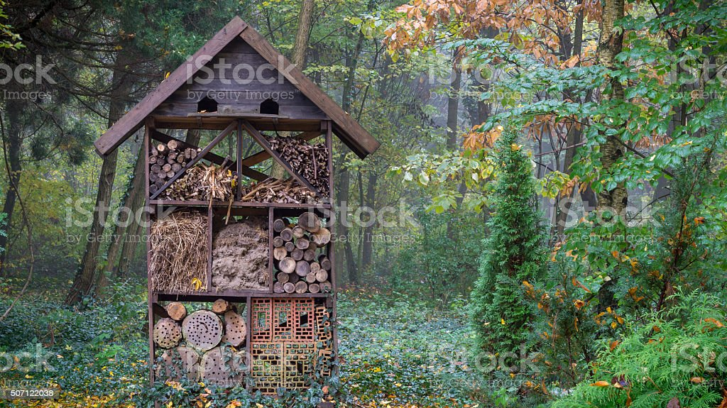 Wooden insect hotel stock photo
