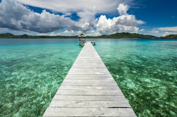 Wooden jetty built on coral reef in Sulawesi in Indonesia In the Togean islands of Central Sulawesi, the local Bajau people have built their villages on stilt and wooden jetty to be able to access the mainland. This jetty enables local boats to access the tourism cottage of Boli Langa. sulawesi stock pictures, royalty-free photos & images