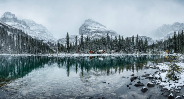 Wooden lodge in pine forest with heavy snow reflection on Lake O'hara at Yoho national park stock photo
