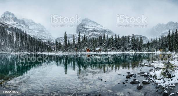 Photo of Wooden lodge in pine forest with heavy snow reflection on Lake O'hara at Yoho national park