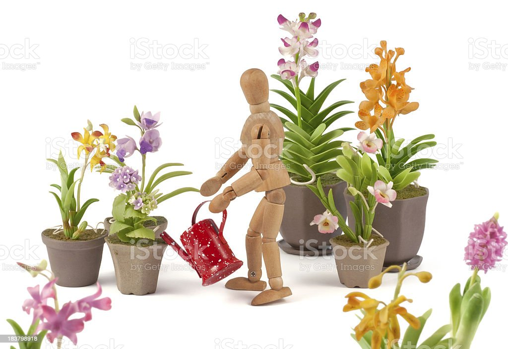 wooden mannequin cultivates his garden royalty-free stock photo