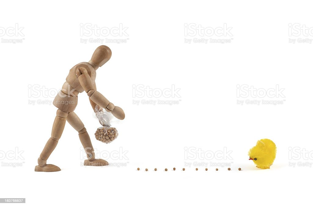 wooden mannequin feeding a chick stock photo