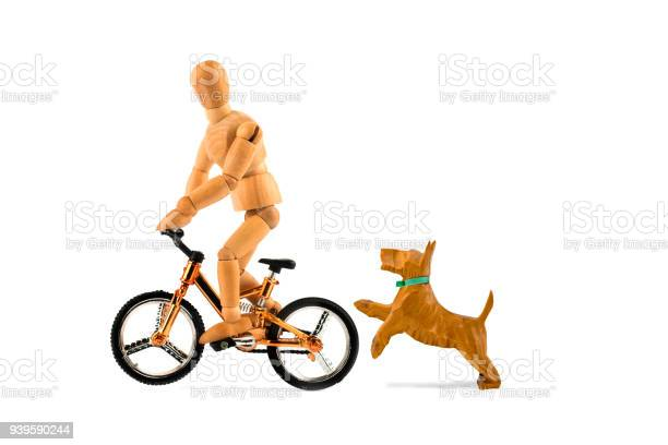 Wooden mannequin on bicycle in danger because of not leashed dog dog picture id939590244?b=1&k=6&m=939590244&s=612x612&h= 0ve ew8z1vjlgnciyacmmtja6z7fqlnjmwhv0kuzry=
