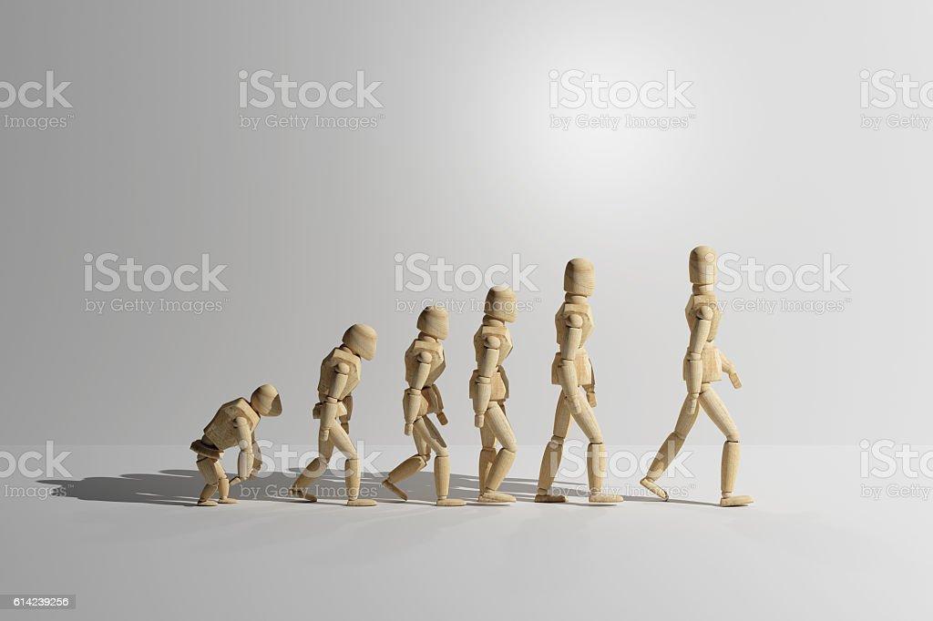 Wooden mannequin prototype of human evolution stock photo