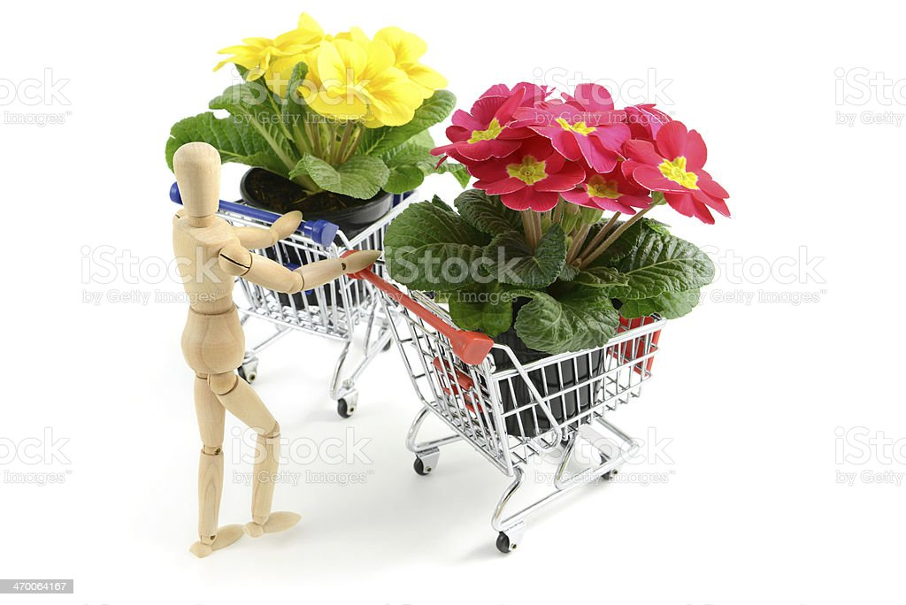 Wooden mannequin with shopping cart and primrose royalty-free stock photo