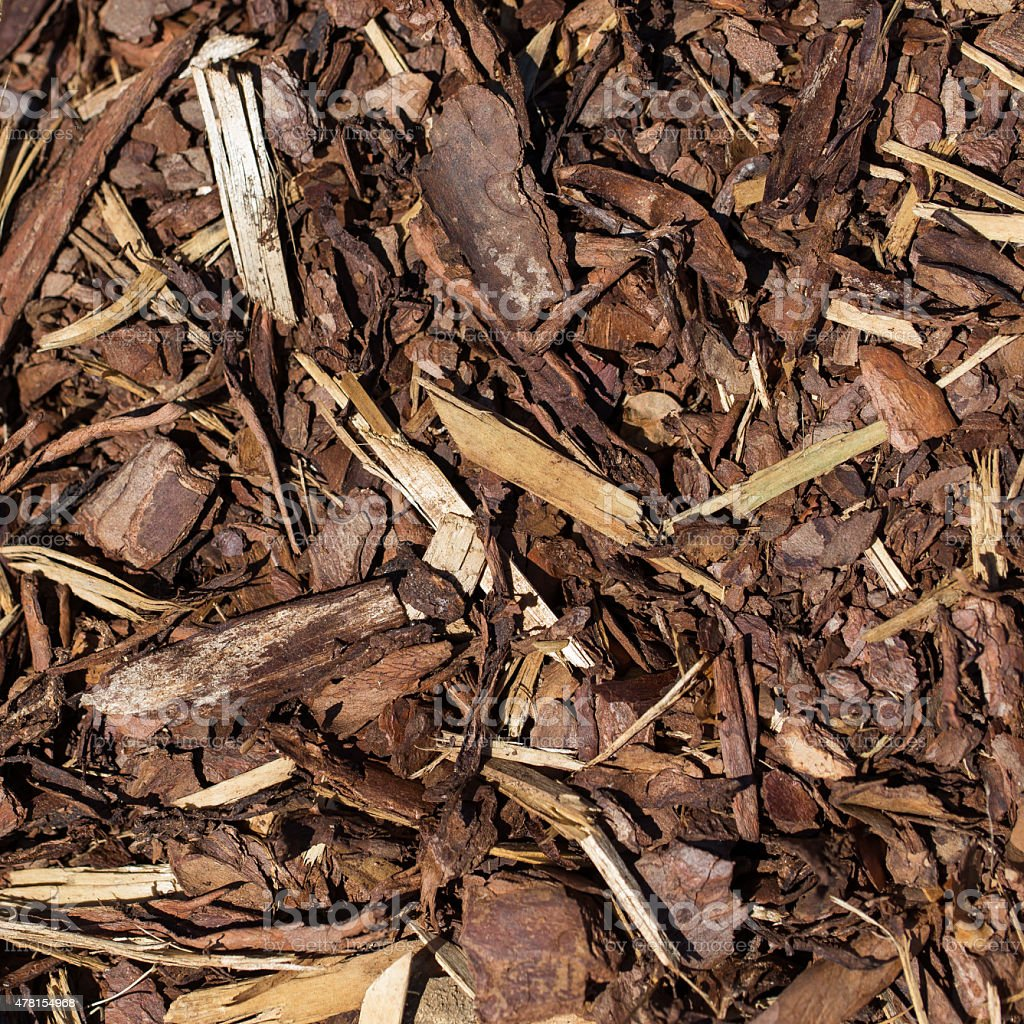 Wooden mulch stock photo