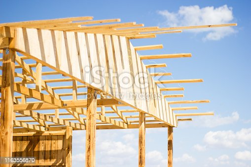 534196421 istock photo Wooden natural house construction against the sky, nature protection 1163556870