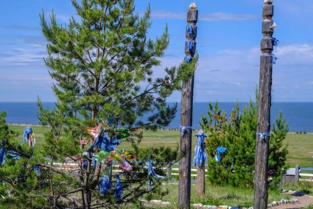나무가 기념 리본 묶여있다 나무 obelisks 스톡 사진