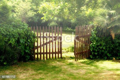 Wooden Open Door and Fog at Garden.