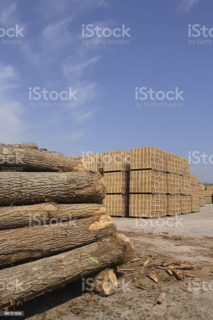 Wooden packing crates production royalty-free stock photo