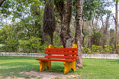Wooden painted red and yellow bench in garden park under the tree shade.