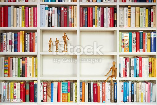 153178960istockphoto Wooden painters dolls in library 1192135059