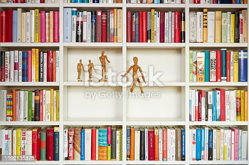 153178960istockphoto Wooden painters dolls in library 1192135378