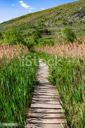 Nature wooden boardwalk through wetland grass at Dragoman Marsh in Sofia Province - the biggest natural karst wetland in Bulgaria, Chepan Mountain in the distance