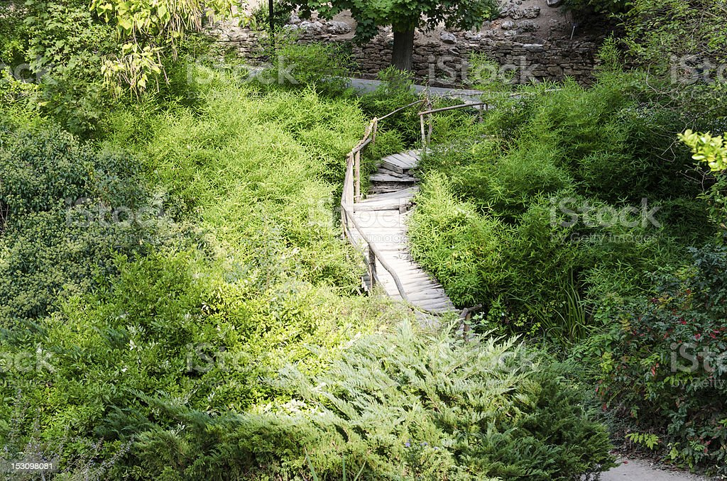 Wooden path into green garden stock photo