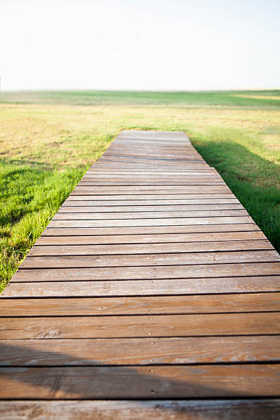 Wooden path leading to nowhere stock photo