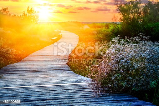 Wooden path over dunes at a beach