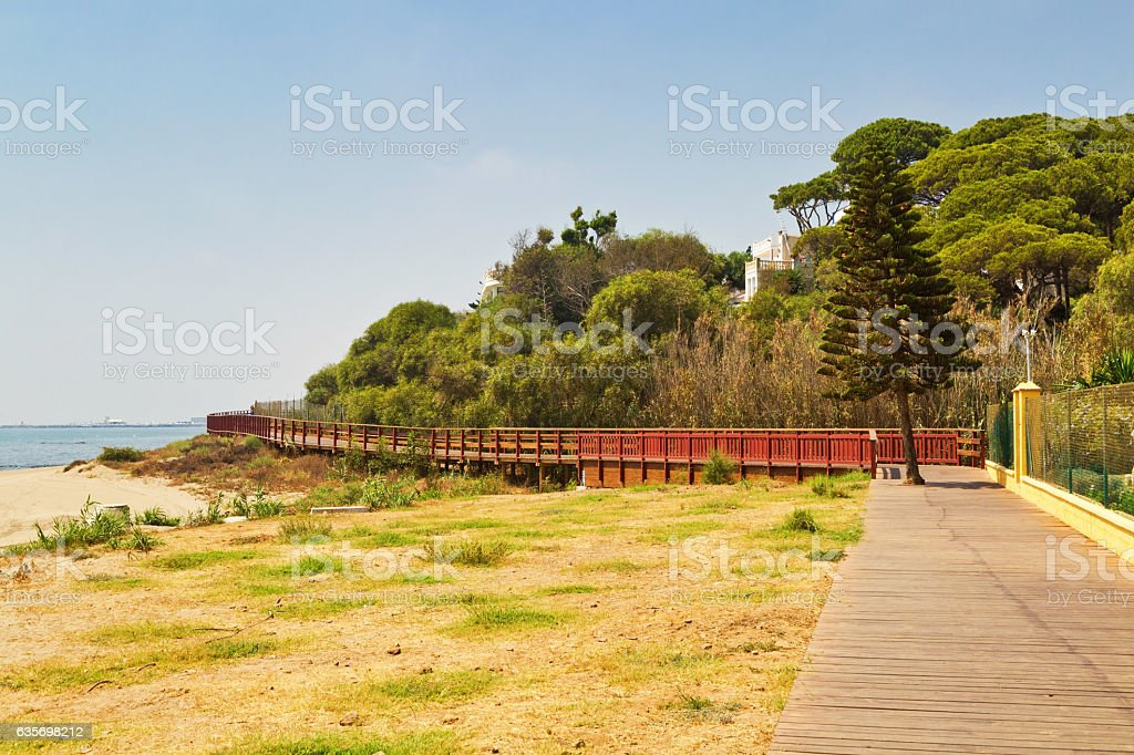 Wooden path on the beach royalty-free stock photo