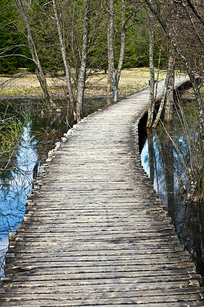 wooden path - plitvice lakes stockfoto's en -beelden