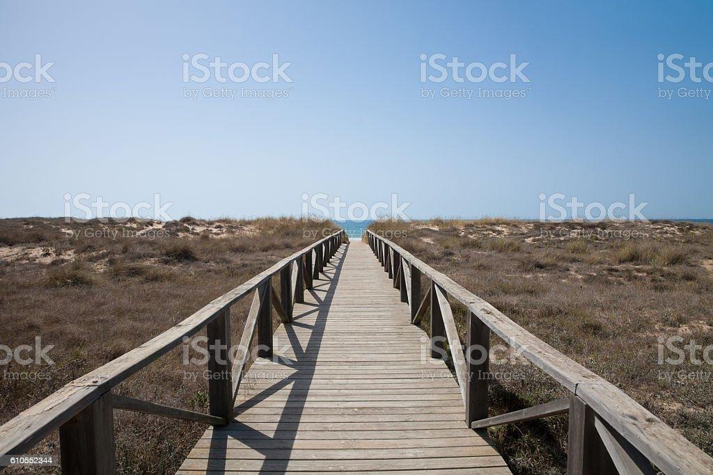 wooden path to ocean horizontal stock photo