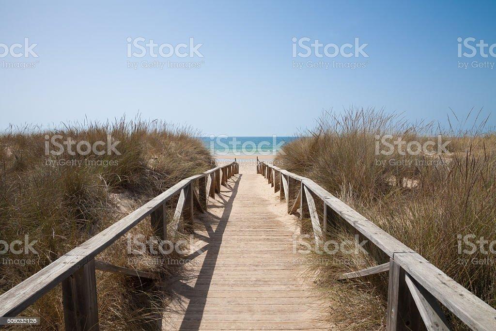 wooden path to sea horizontal stock photo