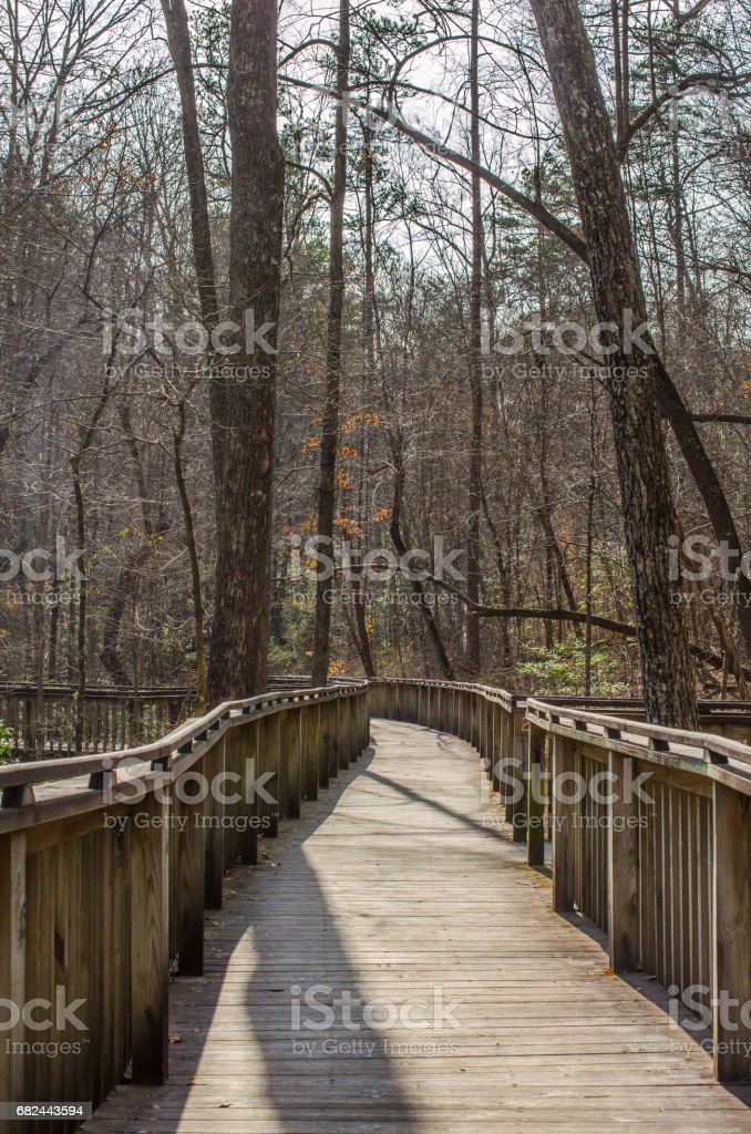 Wooden path walkway thru natural outdoor park wood setting. Explore nature with a walk, stroll or hike thru natures forest. royalty-free stock photo