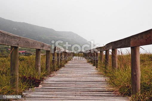 Wooden path in Quiaios Beach in Portugal with mountains background under rainy cloudy sky. Autumnal mood with brown and green tints. Perfect trail for walking.