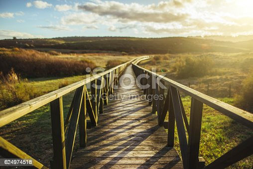 A wooden pathway crossing a natural area